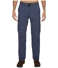 Columbia Silver Ridge Cargo Pant Zinc Voltage Men's Clothing Blue