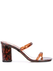 Dolce Vita Nolestort Tortoise Shell Sandals Brown