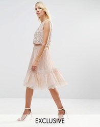 Needle And Thread Lace Tulle Skirt Rose Beige