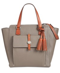 Dooney And Bourke Cambridge North South Shopper Taupe