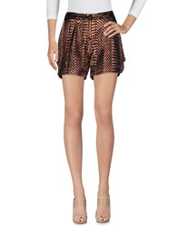 Dv Roma Shorts Bronze