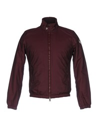 North Sails Jackets Maroon