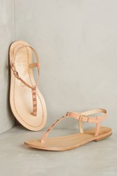 Anthropologie Kmb Studded Thong Sandals Pink
