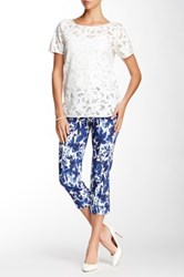 Insight Printed Techno Cuff Cropped Pant Blue
