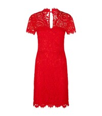 Set Fitted Lace V Neck Dress Red