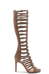 Vince Camuto Chesta Gladiator Taupe