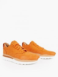 Nike Air Safari Royal Sneakers