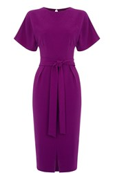 Oasis Drape Belted Wiggle Dress Pink
