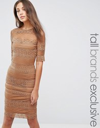 Paper Dolls Tall 1 2 Sleeve All Over Lace Pencil Dress Camel Tan