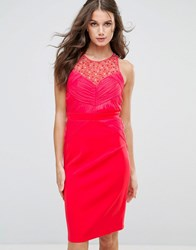 Little Mistress Embellished Pleat Bodycon Midi Dress Coral Pink
