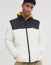 Element Primo Arctic Puffer Jacket In White