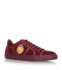 Billionaire Crest Low Top Sneakers Male Plum