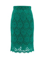 Dolce And Gabbana Floral Cotton Blend Guipure Lace Skirt Green