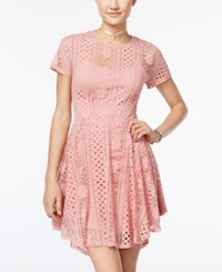 American Rag Lace Fit And Flare Dress Only At Macy's Mellow Rose