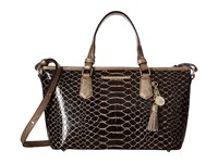 Brahmin Mini Asher Brown Handbags
