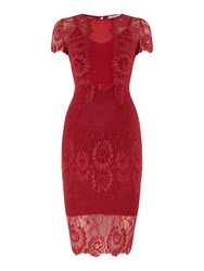Body Frock Round Neck Lace Shift Red