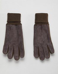 Dents Northumbria Suede Gloves With Knitted Cuff Brown