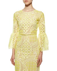 Alexis Aurora Long Sleeve Lace Crop Top Yellow