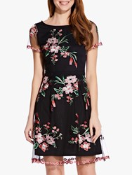 Adrianna Papell Floral Embroidery Flared Dress Black Multi