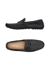 Sergio Rossi Footwear Loafers