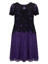 Studio 8 Plus Size Kendra Tapework Dress Purple