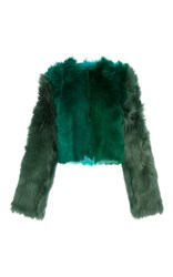 Diane Von Furstenberg Long Sleeve Fur Jacket Green