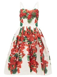 Dolce And Gabbana Geranium Print Silk Organza Dress Red Whte Red And Whte