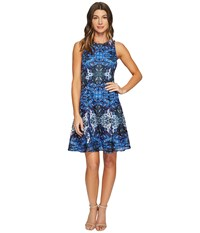 Maggy London Placed Flower Shield Printed Lace Fit And Flare Dress Soft White Cobalt Blue Women's Dress