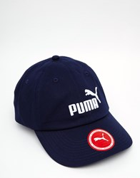 Puma Cap In Blue 5291918 Blue