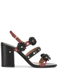 Laurence Dacade Valence Sandals 60