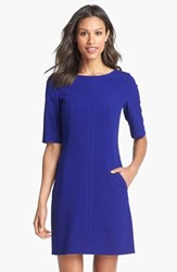 Women's Tahari Seamed A Line Dress
