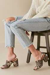 Urban Outfitters Floral Jacquard Mule Heel Black White