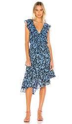 Parker Brynlee Dress In Navy. Midnight Meadow