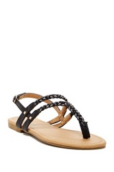 Red Circle Rizmania Thong Sandal Black