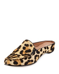 Breva Leopard Print Calf Hair Mule Black Natural Donald J Pliner