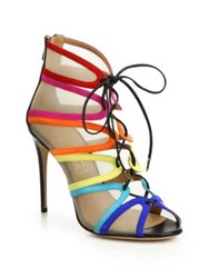 Salvatore Ferragamo By Edgardo Osorio Amber Rainbow Suede And Mesh Lace Up Booties