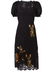 Dolce And Gabbana Bengal Cat Patch Lace Dress Black
