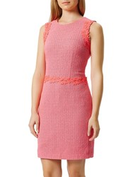 Damsel In A Dress Aquitaine Pink