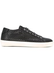 Leather Crown Lace Up Sneakers Black