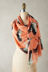 Anthropologie Graceful Swans Scarf Coral
