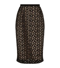 Max Mara Manila Sheer Lace Pencil Skirt Female Black