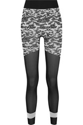 Adidas By Stella Mccartney Run Tight Printed Climalite Stretch Jersey Leggings Black