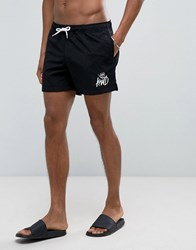 Kings Will Dream Swim Shorts In Black