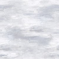 Designers Guild Cielo Wallpaper Cloud Pdg677 05