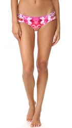 6 Shore Road Soho Bikini Bottoms Cartagena Floral