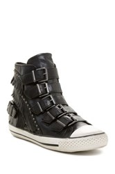 Ash Venin Fringe High Top Sneaker Black