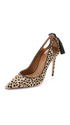 Aquazzura Forever Marilyn Pumps Cheetah