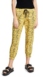 Pam And Gela Snake Track Pants Citron