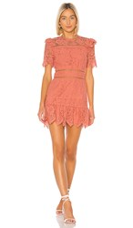 Saylor Sigourney Dress In Pink. Burnt Coral