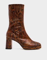 Miista Carlota Boot In Citrine Snake Size 36 Leather